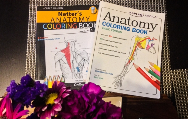Two anatomy coloring books