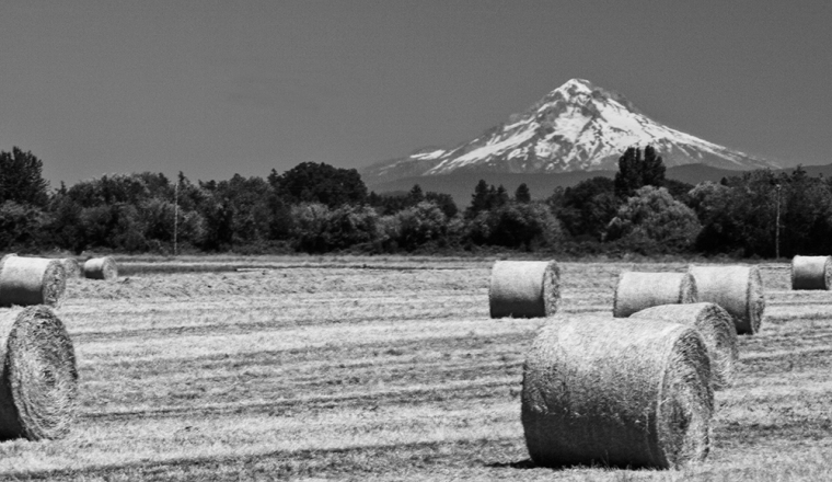 Photo of Mount Hood